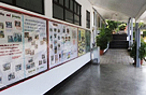 Maria Montessori Foundation